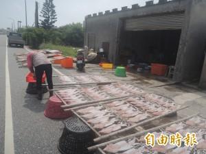 中秋節前燒烤海鮮大缺貨 小管1斤叫價千元