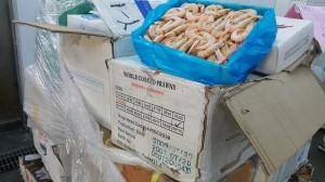 白蝦冷凍11年...過期海鮮流向南部餐廳