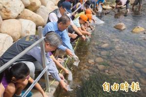 瀕絕臺灣白魚剩2千尾 數量比櫻花鉤吻鮭還少