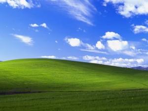 還記得經典的XP桌布嗎? 如今變成這樣…