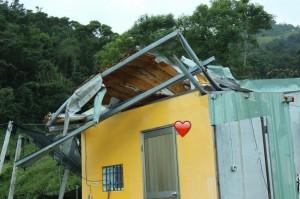 「想要有個家」  紀錄片導演籲捐款助台東重建