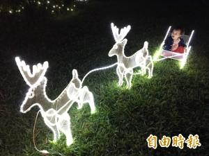 雲林縣府耶誕燈區 成民眾拍照熱點