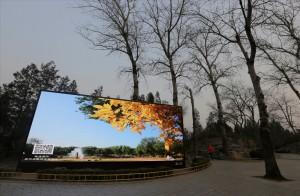中國北部霧霾紅色預警  「躲霾」航線超搶手