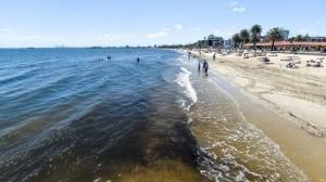 暴風雨襲澳  墨爾本21處戲水區成「屎水海灘」
