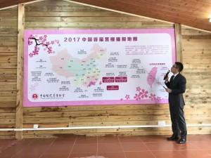 中國「全國」賞櫻地圖竟列台灣  網友噓聲一片