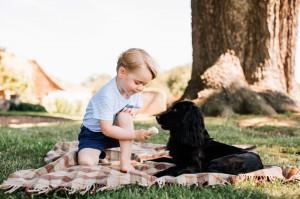 飼主和狗狗超像?研究:雙方確實會互相影響