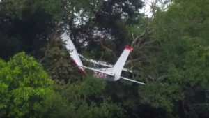 香港小飛機引擎故障 迫降掛樹叢駕駛奇蹟生還!