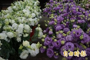 嘉義洋桔梗外銷日本 創2千多萬產值