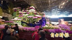 台灣國際蘭展開幕 小英:蘭花產業是台灣驕傲