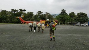 地表最精實! 陸特涼山部隊救援失蹤消防員