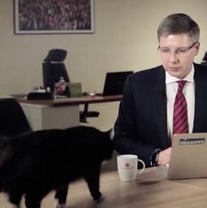 不只寶寶會亂入 直播時愛貓突入鏡市長傻眼!