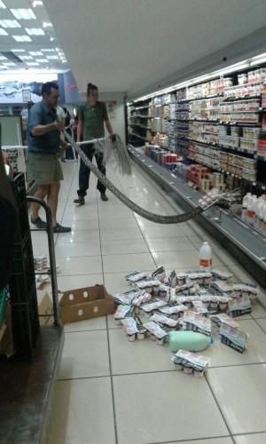 到超市買優格…在冷藏區驚見大蟒蛇