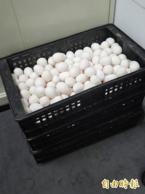 別亂用水清洗雞蛋!營養師:易遭細菌入侵