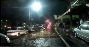 路樹倒塌橫路中 騎士閃不及滑倒被機車壓傷