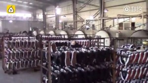 中國警破獲仿冒鞋廠 逾50萬雙名牌鞋全都假的