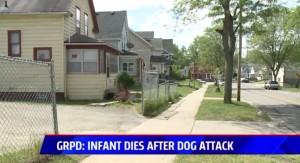 3週大女嬰被獨留在家 遭比特犬啃頭慘死