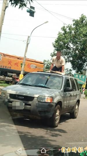 雲林道路旁芒果樹成熟 民眾竟站車頂摘芒果