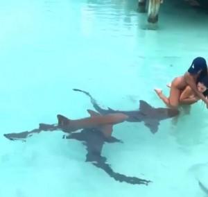富二代過暑假超任性 在泳池讓鯊魚聞私處