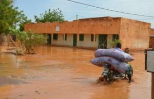 北非沙漠因氣候變遷綠化 專家:這不是好消息!