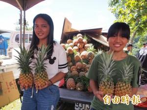 農產包裝規格升級 台灣鳳梨可望大量銷日
