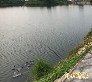 嚇破膽!看都不敢看 釣魚釣到國中同窗的人頭