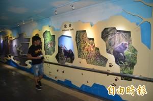 「走進太魯閣」  花蓮火車站地下道打造主題館
