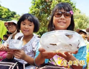 金牌農村野放螢火蟲 全國首度社區手造秘境