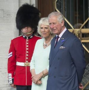 緬甸種族清洗後 英查爾斯王子取消訪問