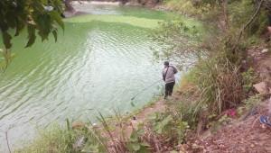 驚!峨眉湖支流漂浮臭「綠油」 環局初判優養化