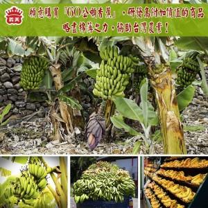義美買60公噸香蕉救蕉農 網友盼推出「厚系列」