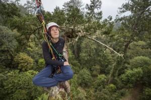 「台灣人應該要感到驕傲」 澳洲團隊拍攝台灣杉之美
