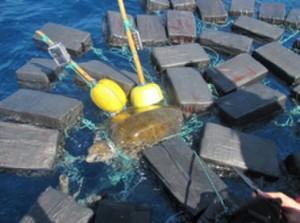 野生海龜慘變「運毒龜」 海防人員起出800公斤古柯鹼