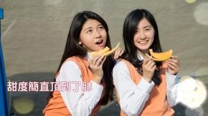 甜度簡直頂到了肺?嘉縣府行銷台灣燈會影片超搞笑