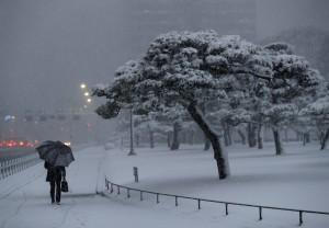 日本23區發布大雪警報  上百架航班停飛2.2萬人受影響