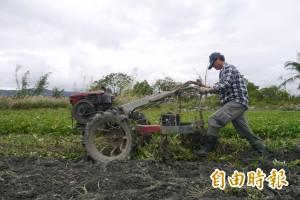 鼓勵農友轉型有機耕作 每公頃最高補助8萬