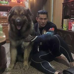 館長愛犬咬斷員工手掌 網驚:原來牠這麼大一隻...