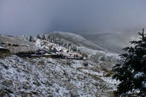 合歡山再現北國風情 追雪車潮湧上山
