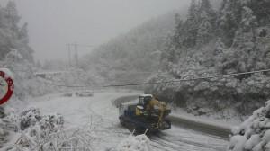 雪太大!太平山宣布下午2點禁入 4點全面封閉