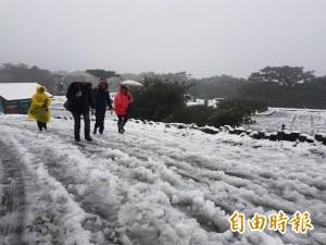 白雪皚皚!陽明山二子坪、鞍部雪景美呆了