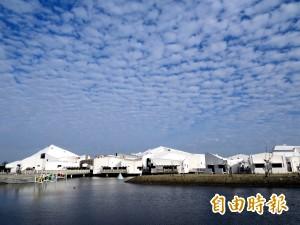 賞鳥趣、漫步綠建築 台江國家公園新春免費導覽