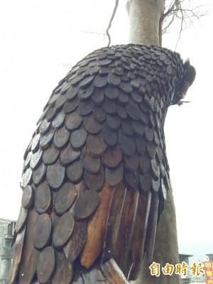 帝雉鳥巢觀景台 國寶鳥美背竟撞臉穿山甲...