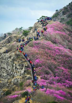 中客縮減觀光市場仍破千萬 韓國觀光公社來台取經