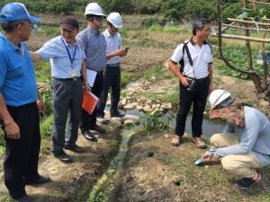 沙鹿南勢溪工程影響溪蟹生態? 中市府尋求合作保育