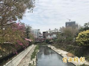安平運河汙染整治 議員:沒含竹溪是盲點