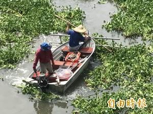 竹市青草湖「斷袋計畫」奏效 重現湖光山色美景!