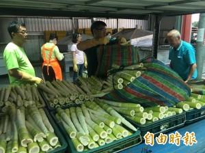 農路中斷、氣候異常 南庄桂竹筍產量創20年最低