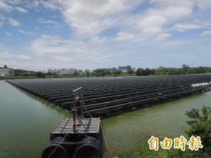 新豐、湖口埤塘「種電」 地方憂心有毒不安全