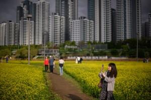 在南韓首爾買房要不吃不喝9年 台北則要15年