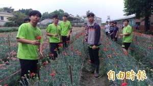 送2萬朵康乃馨給媽媽 虎尾農工學生自己種的