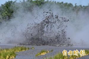 農民欲哭無淚!目睹萬丹泥火山噴發 淹沒1公頃稻作